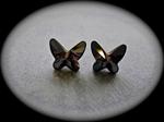 Picture of Swarovski butterflies earrings